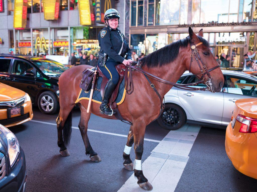 Reiterin der New Yorker Polizeistaffel