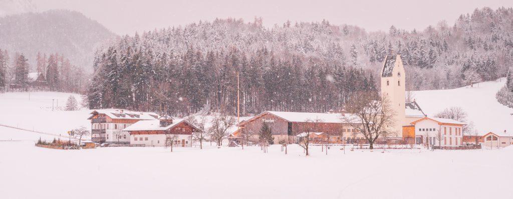 Winterliches Roßholzen